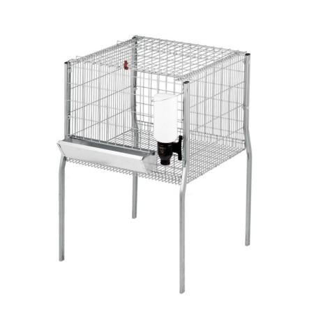 jaula-para-pollos-de-engorde (2)